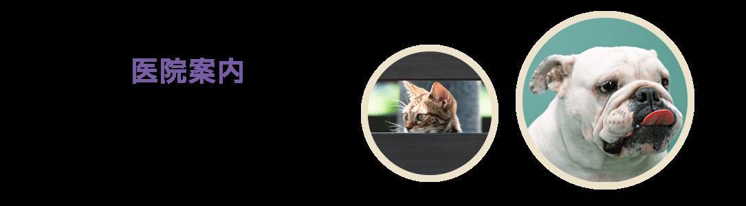 【医院案内】 | 動物病院 神奈川県綾瀬市 予防接種 トリミング 座間市 海老名市